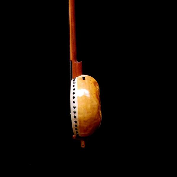 banjo-longneck – 2